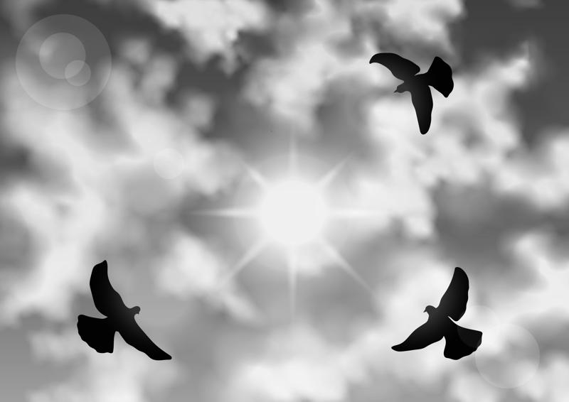 Silhouette of birds flying across clouds and sun